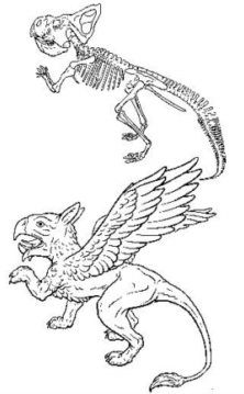 griffinceratops copy