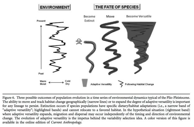 climate early homo potts
